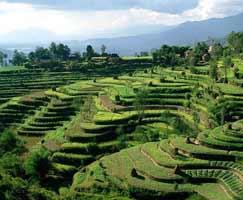 Nepal Honeymoon